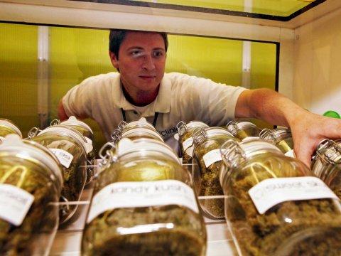 Cannabis Sativa Inc