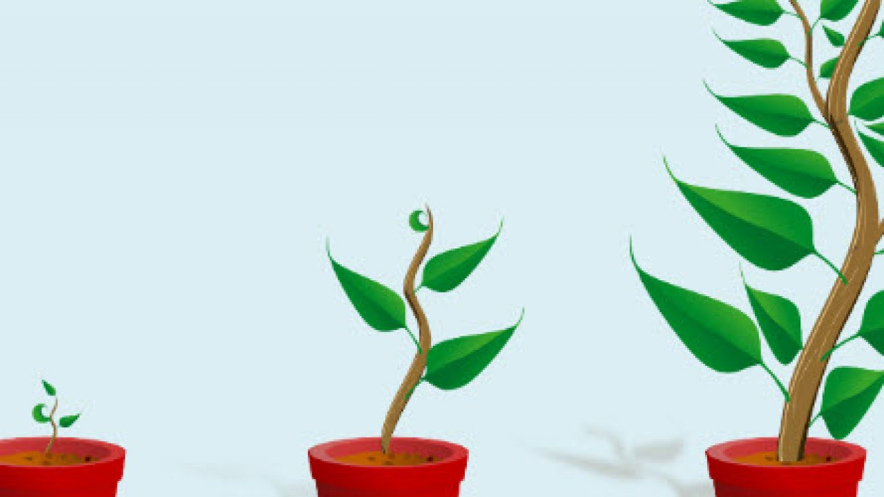 Why There is Powerful Growth Potential Ahead for Green